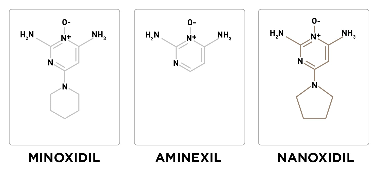 minoxidil aminexil nanoxidil